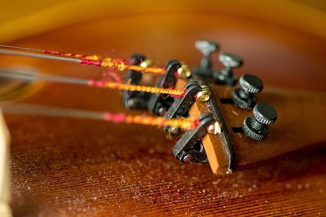 violin care strings
